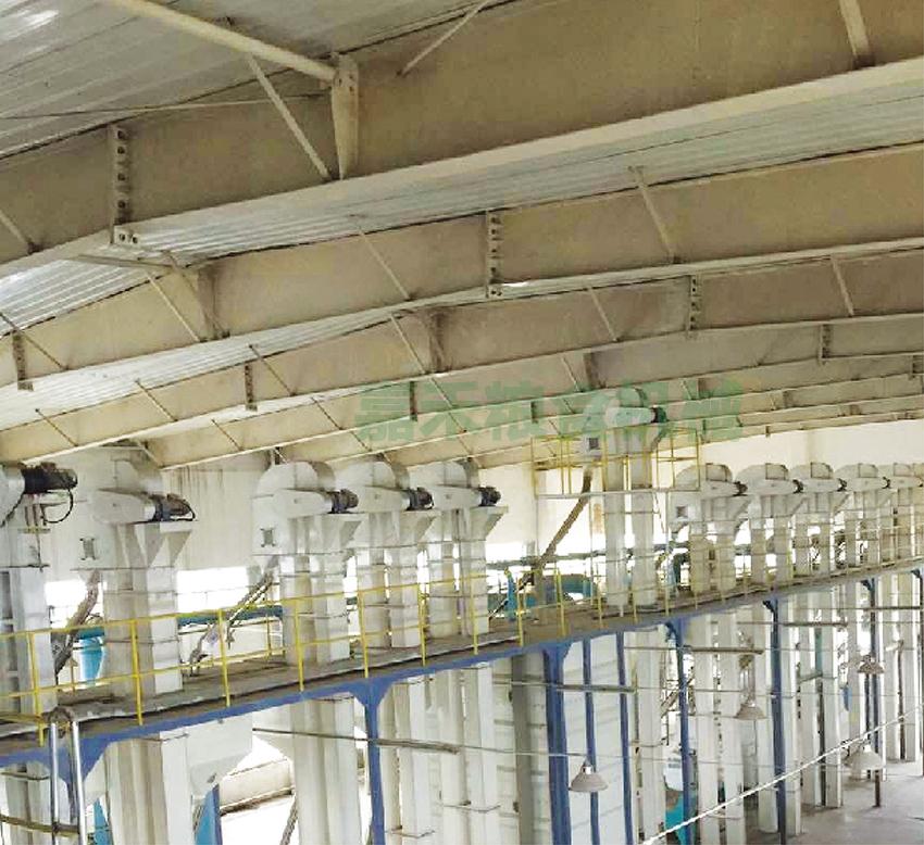 河南省黄国粮业股份有限公司200吨生产线